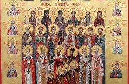 Soborul Sfintilor Romani, Camelia Munteanu